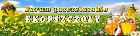 Forum Pszczelarskie Ekopszczoły